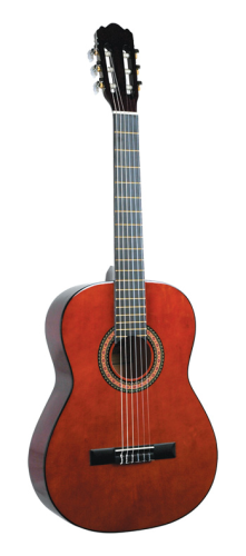 Lucida Classical Guitar with Gig Bag